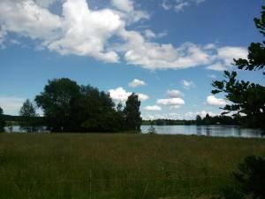 Sešli jsme se v malebné krajině mezi rybníky.